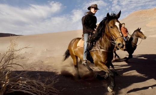 Gallop across the Atacama