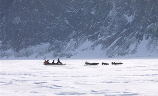 Dogsledding across the tundra