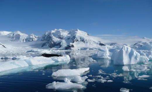 Unique Polar vistas