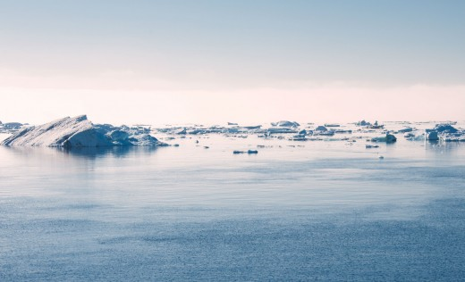Discover the Antarctic Ice Floes