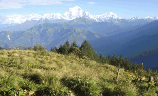 Trek over the high passes and through deep gorges of the Nepalese Himalaya