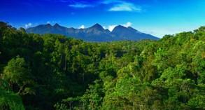 PAPUA NEW GUINEA: MOUNT BOSAVI